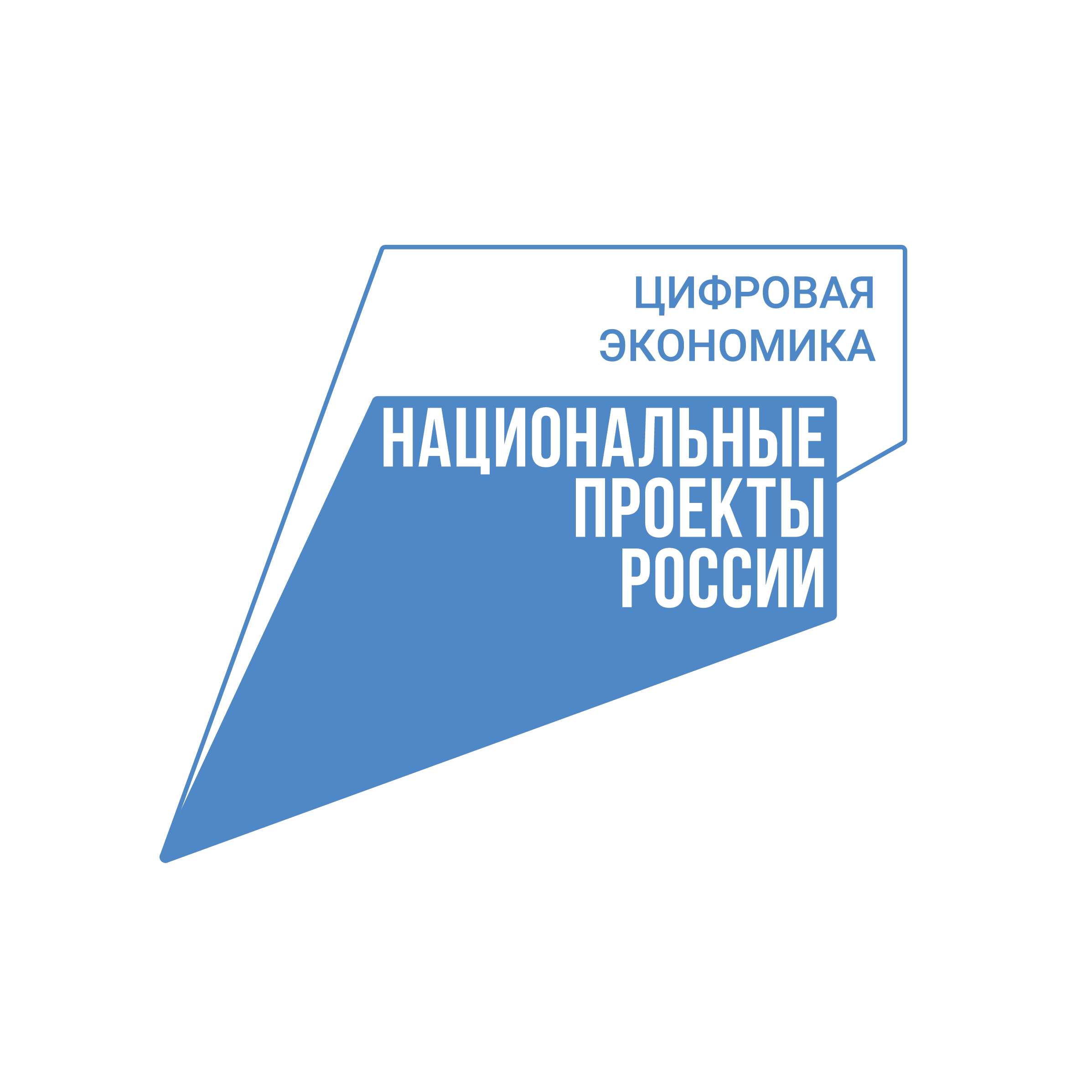 Цифровая экономика Российской Федерации